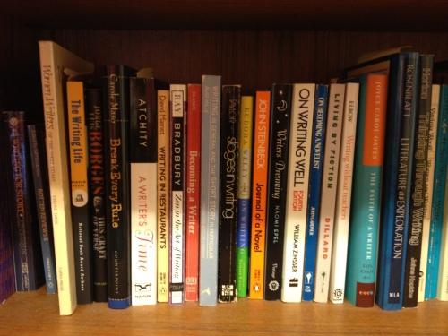 Bookshelves 028