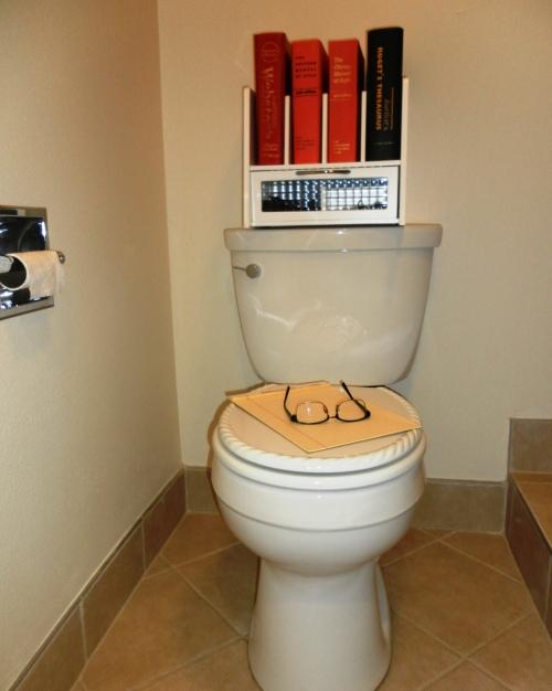 My Toilet