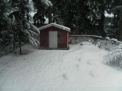February Snow 2
