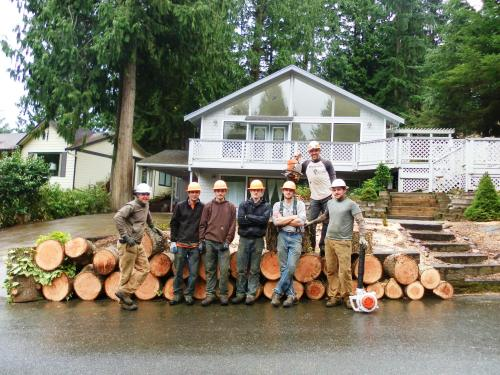 Tree Crew